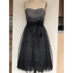 BCBG Tulle Polkadot Ballerina Dress